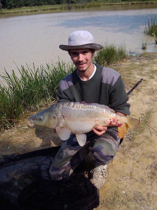 Étang détente - pêche à la carpe en isère, carpe miroir