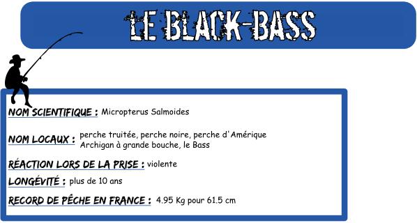 Le black bass de l etang detente 1